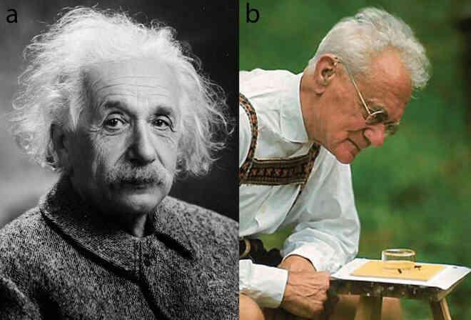 Một bức thư thất lạc của Einstein vừa được tìm thấy, và nó tiết lộ những dự đoán của ông về siêu giác quan của động vật - Ảnh 2.